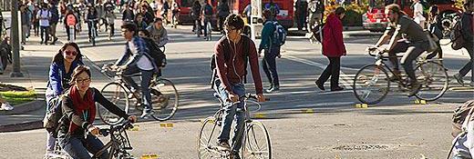 uc-davis_bikesCUT