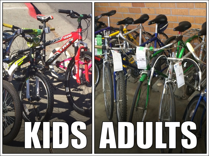 Kids and Adult Bikes
